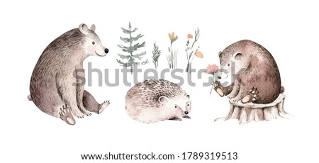 Woodland watercolor cute animals baby bear and hedgehog Scandinavian owls on forest nursery poster design. Isolated charecter.