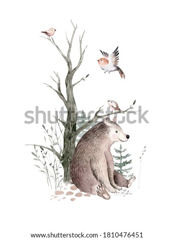 Woodland watercolor cute animals baby bear. Scandinavian bear on forest nursery poster design. Isolated charecter.