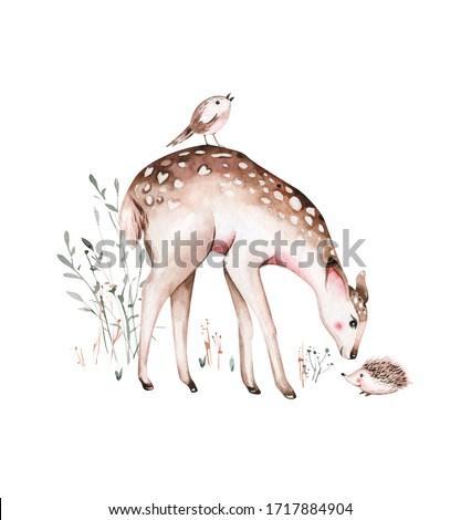 Woodland watercolor cute animals baby deer. Scandinavian cartoon forest nursery poster design