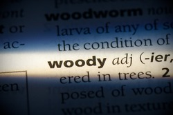 woody word in a dictionary. woody concept, definition.
