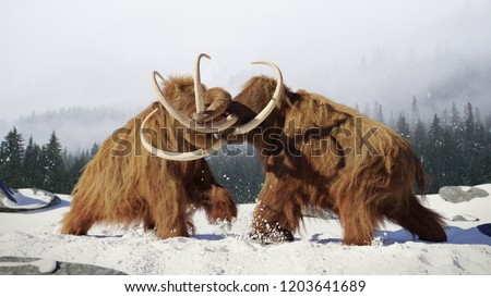 woolly mammoth bulls fighting, prehistoric ice age mammals in snow covered landscape (3d rendering)