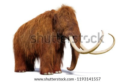 woolly mammoth, prehistoric mammal isolated with shadow on white background (3d illustration)