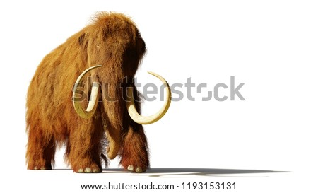 woolly mammoth, prehistoric mammal isolated with shadow on white background (3d rendering)