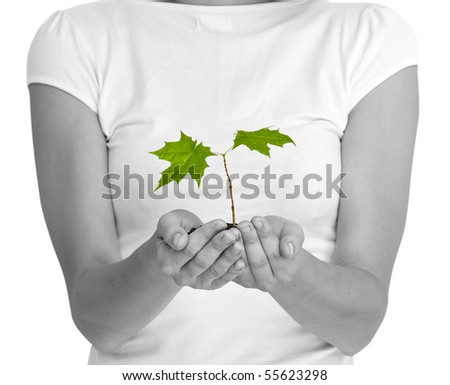 wooman holding a plant between hands on white - stock photo