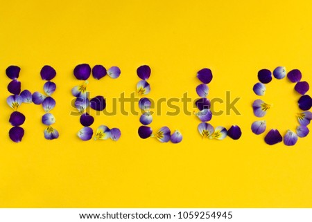 free photos words made out of petals avopix com