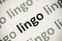 word lingo printed on white paper macro
