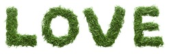 word love, made of green grass, isolated on white background