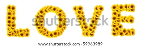 word love with sunflower flowers showing valentines day concept