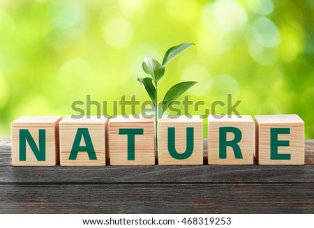 Word nature on wooden blocks with plant. Ecological concept. #468319253