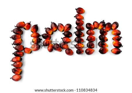 Word palm made from fresh palm oil seeds isolated on white background, selective focus.
