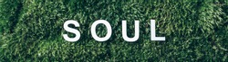 Word SOUL on moss, green grass background. Top view. Copy space. Banner. Biophilia concept. Nature backdrop. Body, mind, spirit and soul concept.