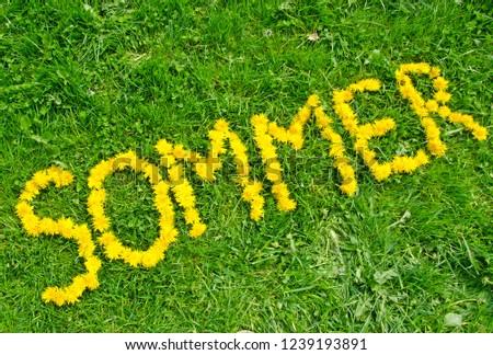 Word 'summer' (in German) made of flowers on green meadow #1239193891