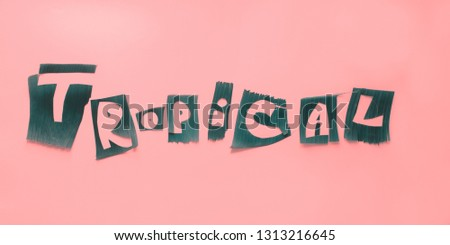 Word TROPICAL letters from green tropical palm leaves on pink textured background. Original idea from natural material for summer design #1313216645
