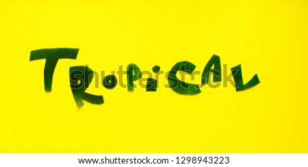 Word TROPICAL letters from green tropical palm leaves on yellow textured background. Original idea from natural material for summer design #1298943223