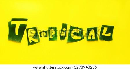 Word TROPICAL letters from green tropical palm leaves on yellow textured background. Original idea from natural material for summer design #1298943235