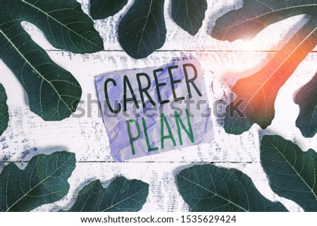 Word writing text Career Plan. Business concept for ongoing process where you Explore your interests and abilities.