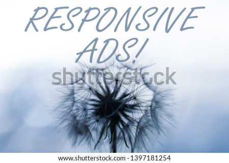 Word writing text Responsive Ads. Business concept for Automatically adjust form and format to fit existing ad space. #1397181254