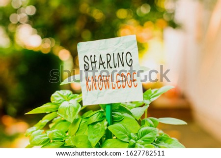 Word writing text Sharing Knowledge. Business concept for knowledge is exchanged among showing or organizations Plain empty paper attached to a stick and placed in the green leafy plants.