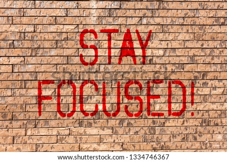 Word writing text Stay Focused. Business concept for Maintain Focus Inspirational Thinking Brick Wall art like Graffiti motivational call written on the wall.