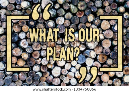 Word writing text What Is Our Planquestion. Business concept for Mission Purpose Agenda Strategize Brainstorming Wooden background vintage wood wild message ideas intentions thoughts. #1334750066