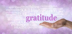 Words associated with feeling Gratitude - Male open palm hand with the word GRATITUDE floating above surrounded by a word cloud on a pink bokeh background