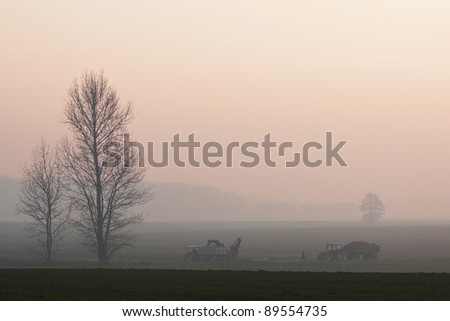 Work on the field in late autumn morning