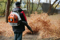 Worker cleaning lawn in park from Dead Leaves using gas powered Leaf Blower
