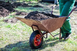 Worker with a wheelbarrow full of compost