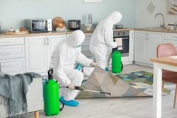 Workers in biohazard suits disinfecting house