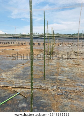 Workers working in shrimp ponds and fish ponds To prepare the pond before raising #1348981199