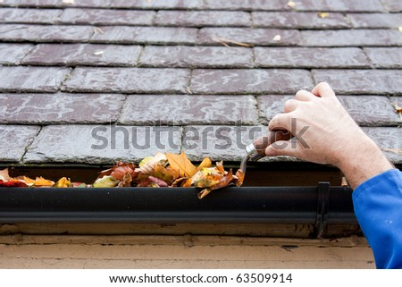 Working Hands Clearing Autumn Leaves from Gutter with Trowel