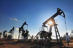 working oil pumps silhouette against sun