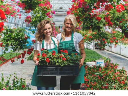 Working together in greenhouse