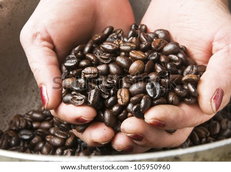 Working Woman Hands Holding Coffee Beans