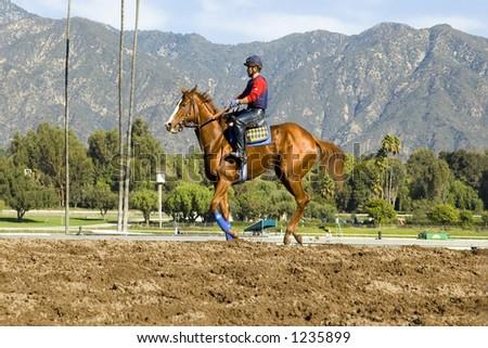 Workout at Santa Anita racetrack, California #1235899