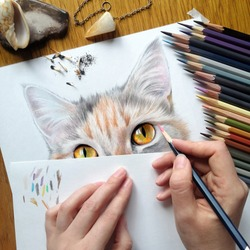 Workplace. Hands draw a portrait of a cat with colored pencils
