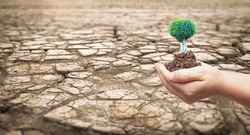 World Day to Combat Desertification and Drought concept: Part of a Huge Area of Dried Land Suffering from Drought