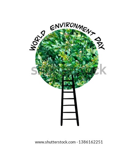 World Environment Day card  with green tree crown  and  stairs. Banner devoted to care for planet ecology