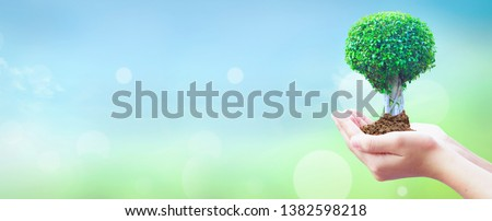 World Environment Day concept:  hands holding big tree over  sky background
