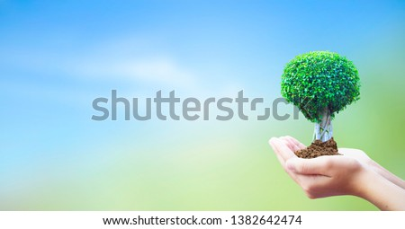 World Environment Day concept:  hands holding big tree over  sky background #1382642474