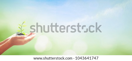World environment day concept: Human hand holding small tree over blurred world map of clouds background