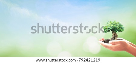 World environment day concept: Human hands holding big tree over blue sky and green forest background