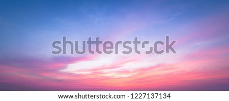 World environment day concept: Panoramic clear evening sky sunset background