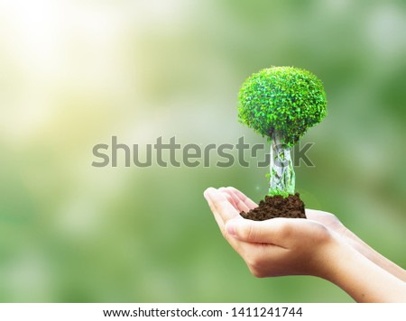 World Environment Day concept: protect the Earth #1411241744