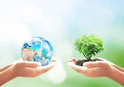 World environment day concept: Two human hands holding earth globe and heart shape of tree over blurred green nature background. Elements of this image furnished by NASA