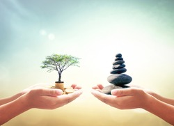 World environment day concept: Two human hands holding stacks of golden money with big tree and Zen stones on blurred nature background