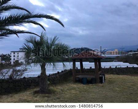 world famous luxury resort's beach  #1480814756