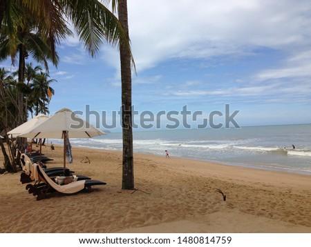 world famous luxury resort's beach  #1480814759
