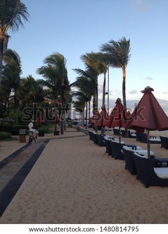 world famous luxury resort's beach  #1480814795