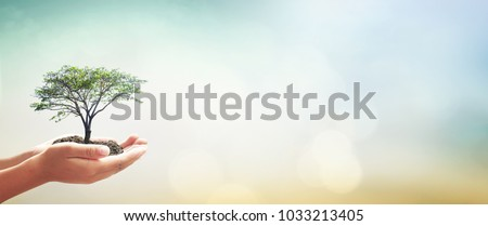 World kindness day concept: Human hands holding big tree over green forest background